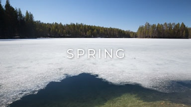stock footage category finland spring