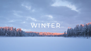 stock footage category finland winter